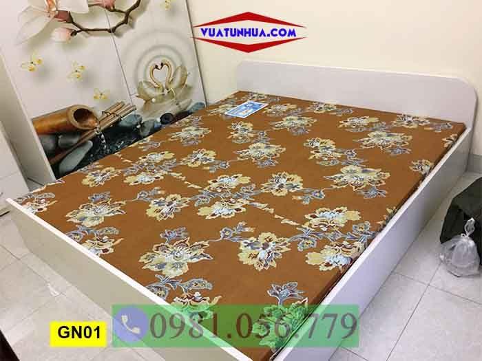 Giường ngủ bằng nhựa kiểu bệt GN01